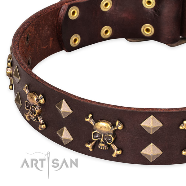 Daily use embellished dog collar of fine quality full grain genuine leather