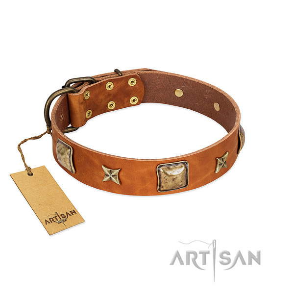 Remarkable full grain natural leather collar for your dog