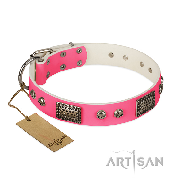Easy to adjust natural leather dog collar for basic training your pet