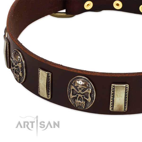 Corrosion proof fittings on full grain leather dog collar for your doggie