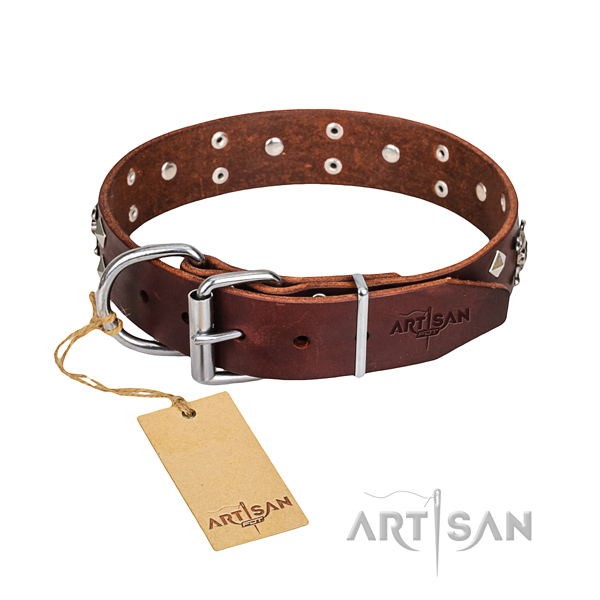 Daily walking dog collar of fine quality full grain natural leather with studs