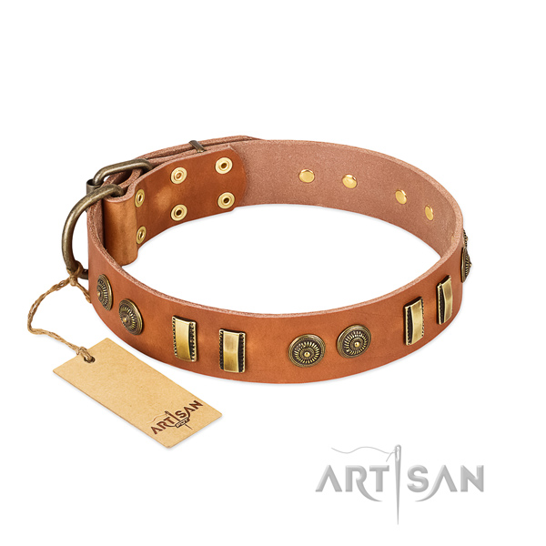 Corrosion resistant traditional buckle on leather dog collar for your canine