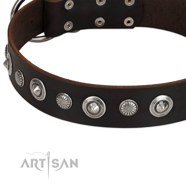 Stylish embellished dog collar of fine quality full grain leather