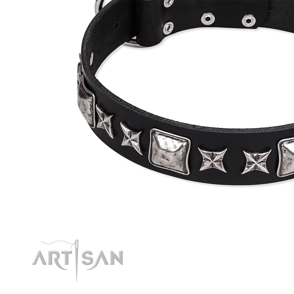 Handy use studded dog collar of reliable full grain leather