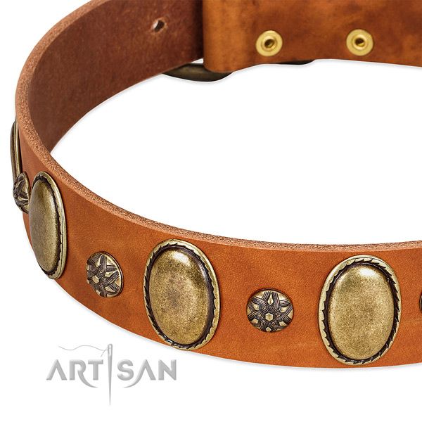 Daily use top notch full grain natural leather dog collar