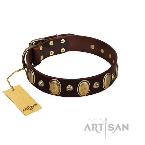 Natural leather dog collar of top rate material with incredible embellishments