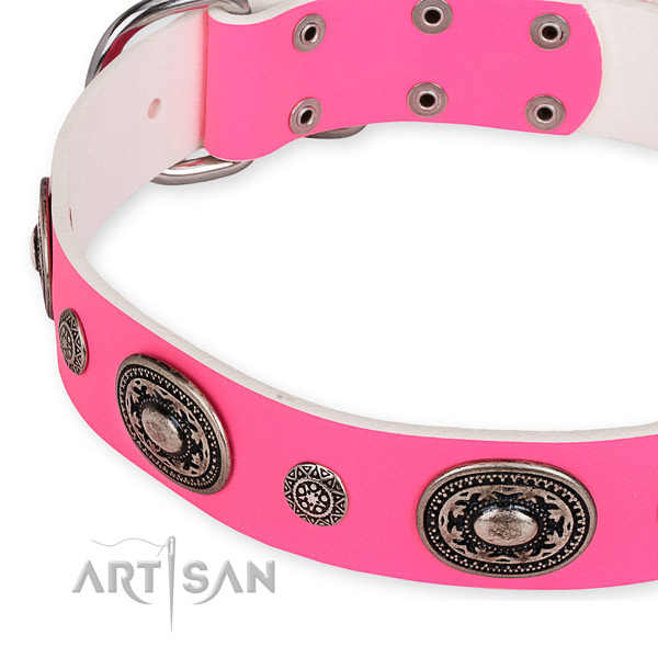 Leather dog collar with stylish design rust-proof adornments