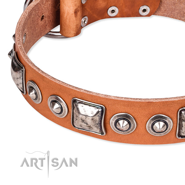 Soft leather dog collar handmade for your handsome pet