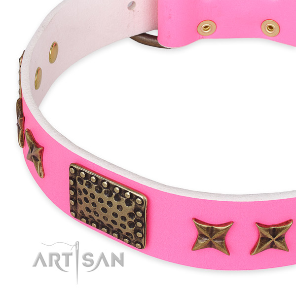 Full grain leather collar with corrosion proof traditional buckle for your attractive pet