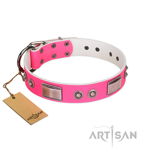 Amazing dog collar of genuine leather with studs