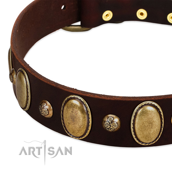 Genuine leather dog collar with extraordinary adornments