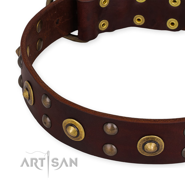 Full grain genuine leather collar with rust-proof D-ring for your impressive four-legged friend