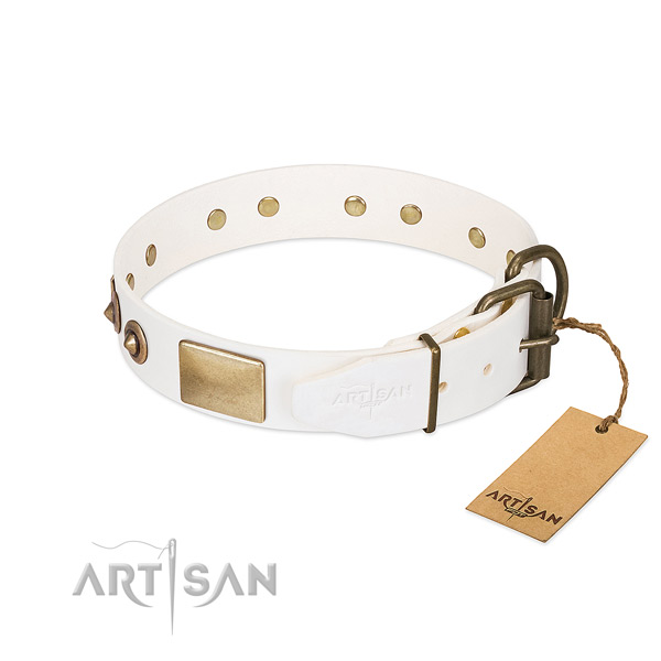 Reliable decorations on leather dog collar for your four-legged friend