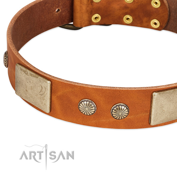 Corrosion resistant D-ring on full grain leather dog collar for your canine