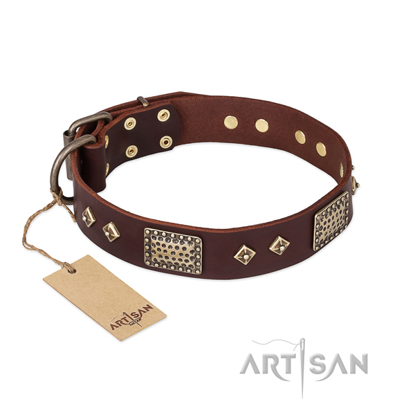 Handmade full grain natural leather dog collar for everyday walking
