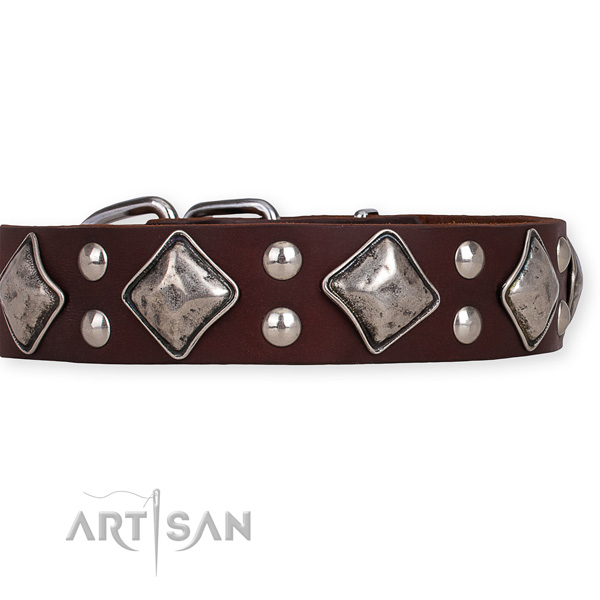 Full grain leather dog collar with exceptional corrosion resistant decorations