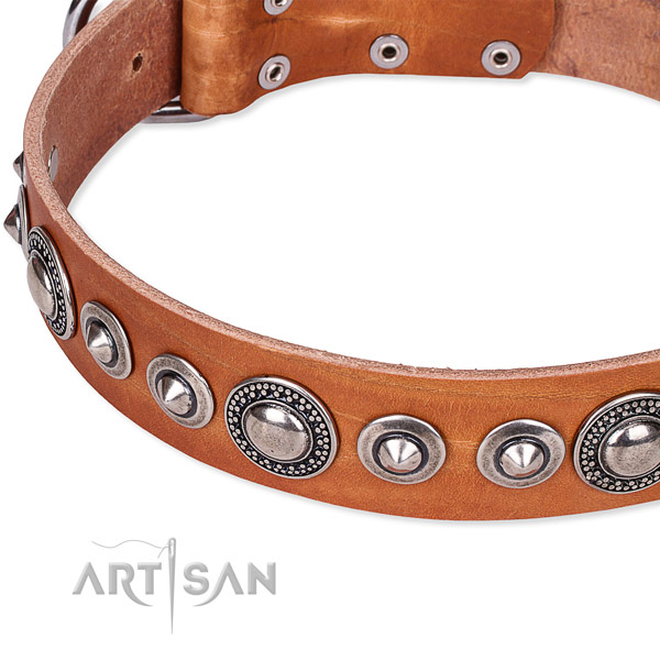 Stylish walking decorated dog collar of top notch full grain leather