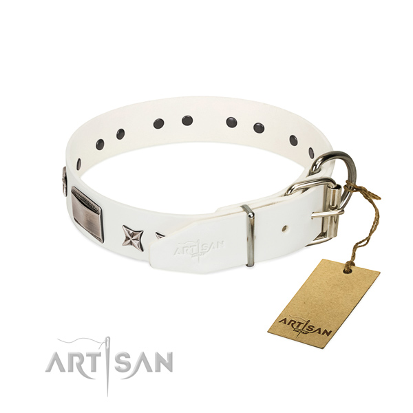 Extraordinary collar of full grain genuine leather for your handsome four-legged friend