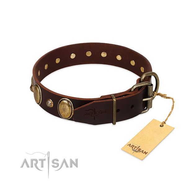 Corrosion proof fittings on full grain leather collar for everyday walking your pet