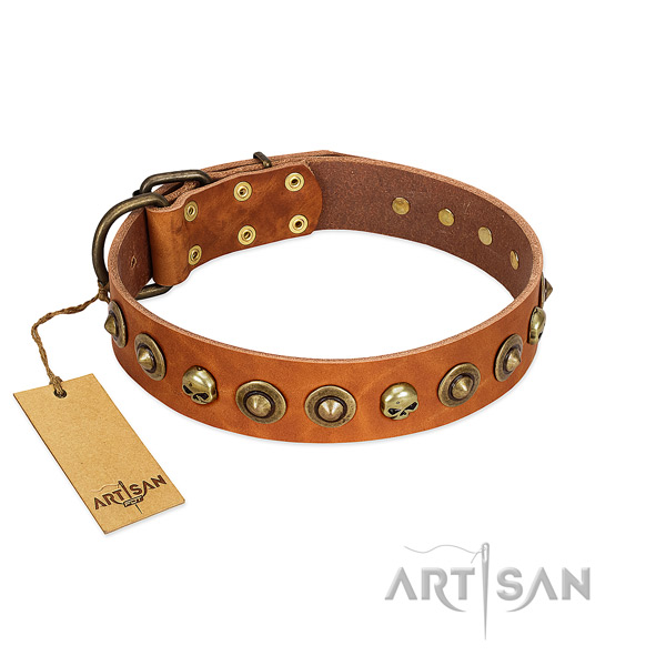 Full grain natural leather collar with unique adornments for your canine
