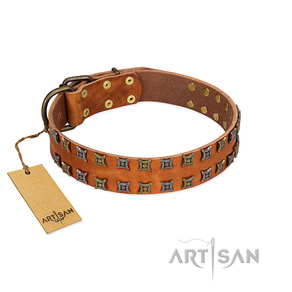 Reliable natural leather dog collar with adornments for your pet