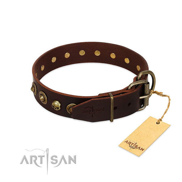 Natural leather collar with remarkable adornments for your pet