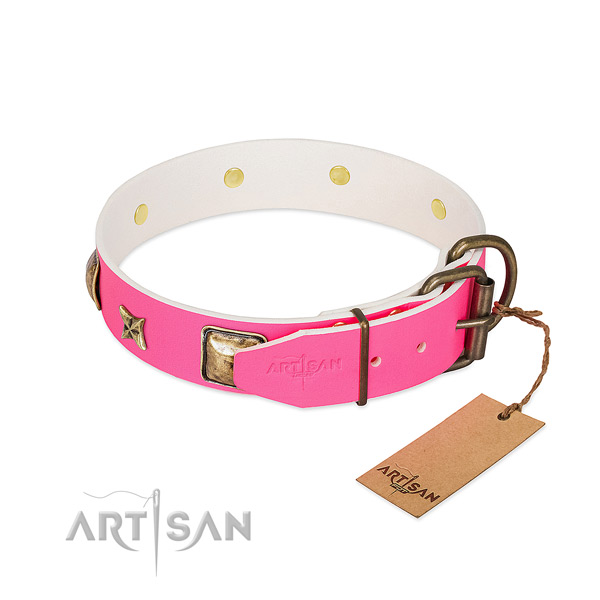 Rust resistant buckle on natural genuine leather collar for basic training your four-legged friend
