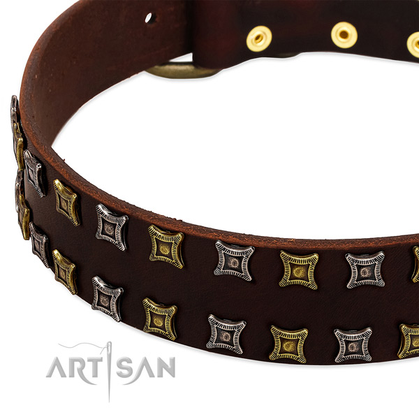 Reliable leather dog collar for your beautiful pet