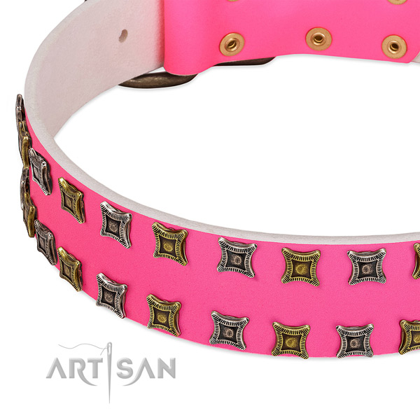 Natural leather dog collar with extraordinary embellishments