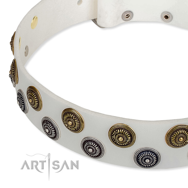 Basic training studded dog collar of durable natural leather