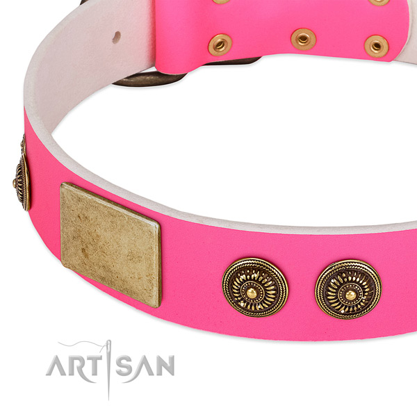 Adorned dog collar crafted for your stylish canine