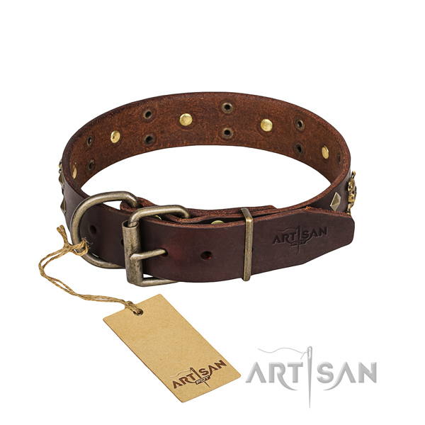Stylish walking dog collar of top quality genuine leather with embellishments
