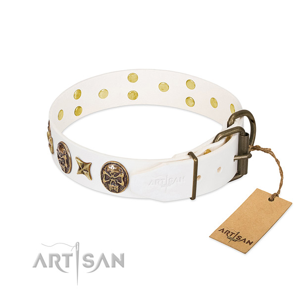 Rust resistant hardware on leather collar for stylish walking your canine