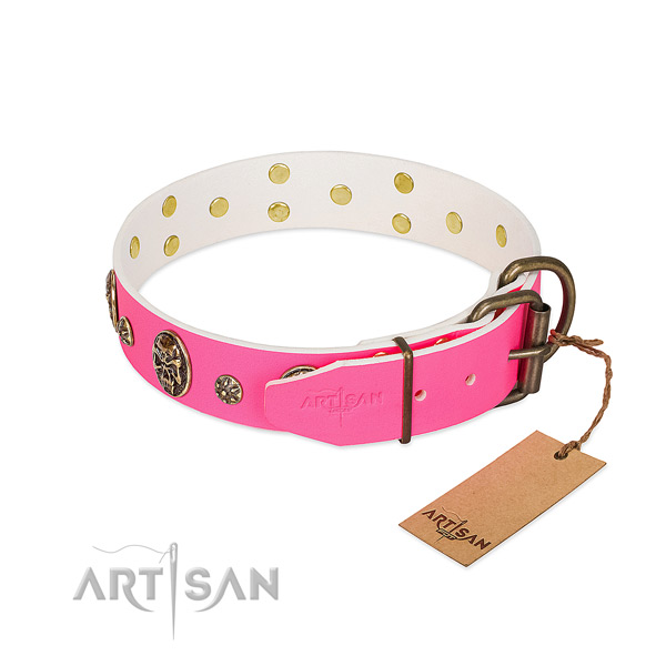 Durable fittings on full grain natural leather collar for daily walking your doggie