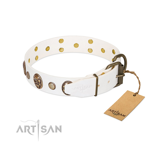 Strong traditional buckle on natural genuine leather collar for daily walking your four-legged friend