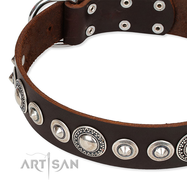 Comfy wearing studded dog collar of best quality full grain leather