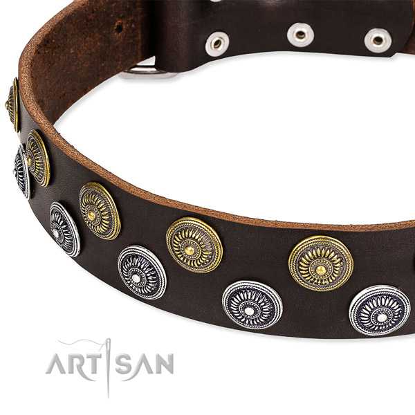 Comfortable wearing decorated dog collar of quality leather