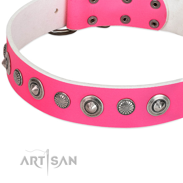 Leather collar with reliable D-ring for your beautiful canine