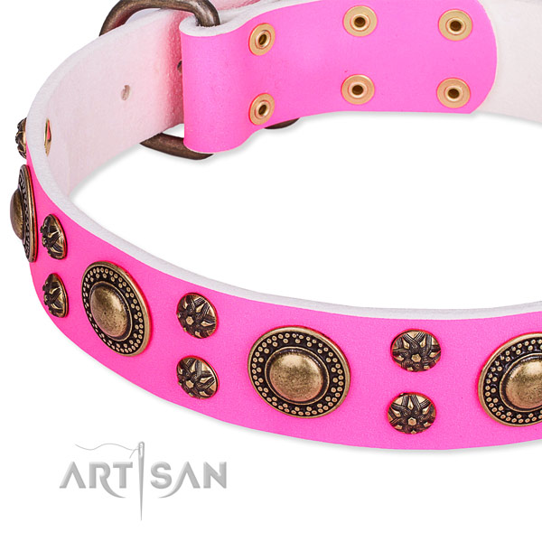 Fancy walking embellished dog collar of best quality full grain leather