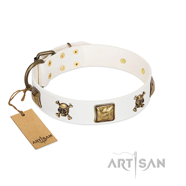 Impressive leather dog collar with corrosion proof adornments