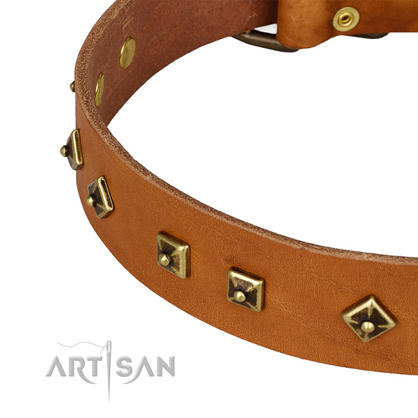 Easy adjustable full grain natural leather collar for your attractive doggie