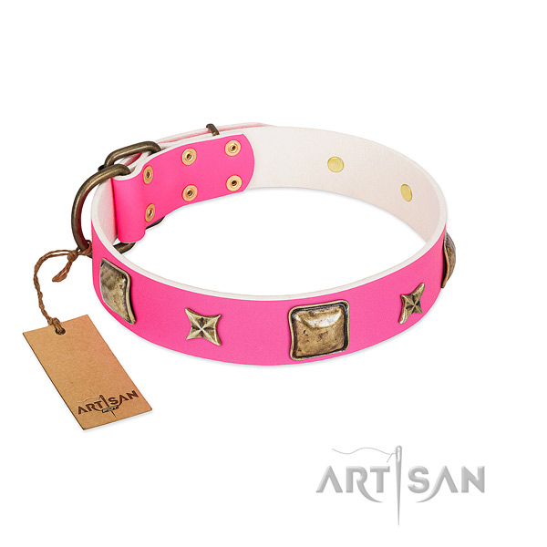 Full grain leather dog collar of top notch material with unusual decorations