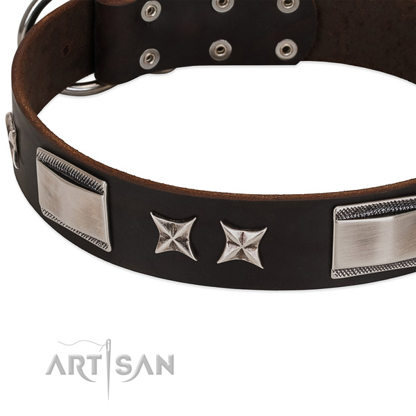 Significant collar of genuine leather for your beautiful dog