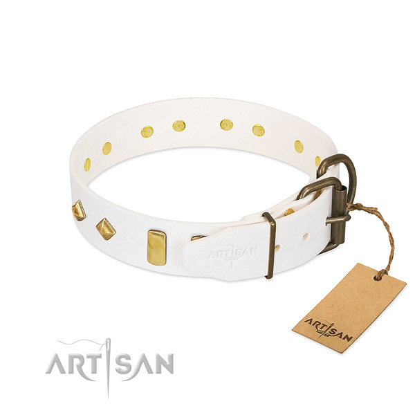 Flexible full grain natural leather dog collar with rust resistant hardware