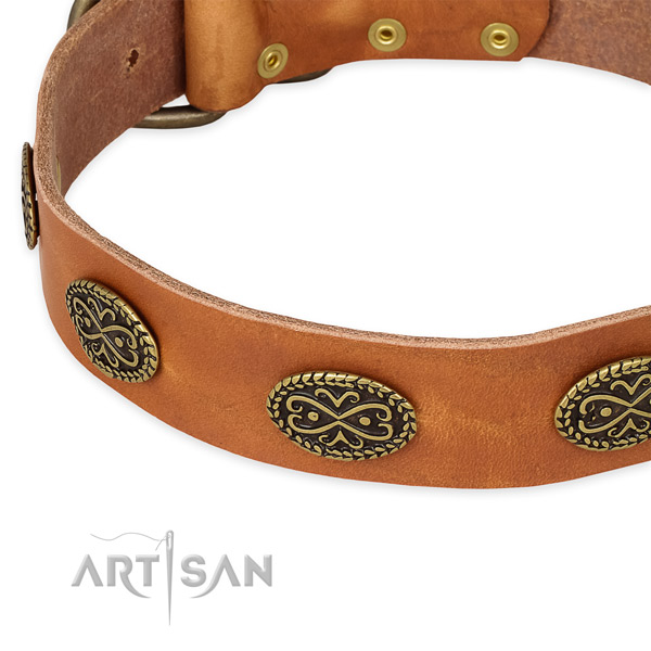 Designer leather collar for your stylish canine
