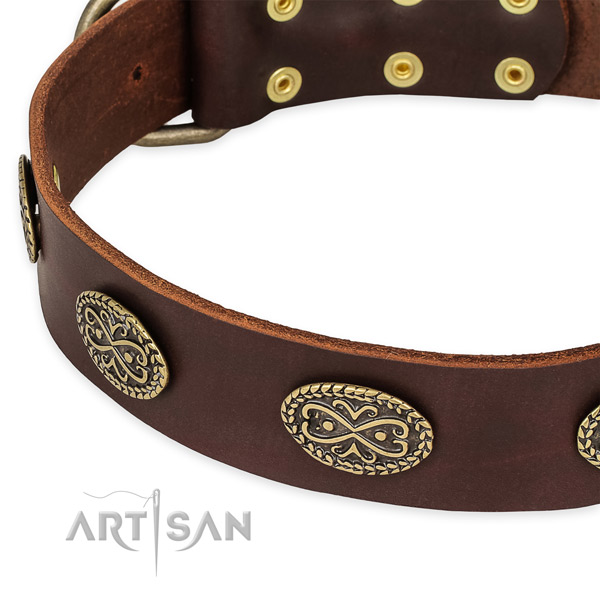 Easy to adjust genuine leather collar for your stylish pet