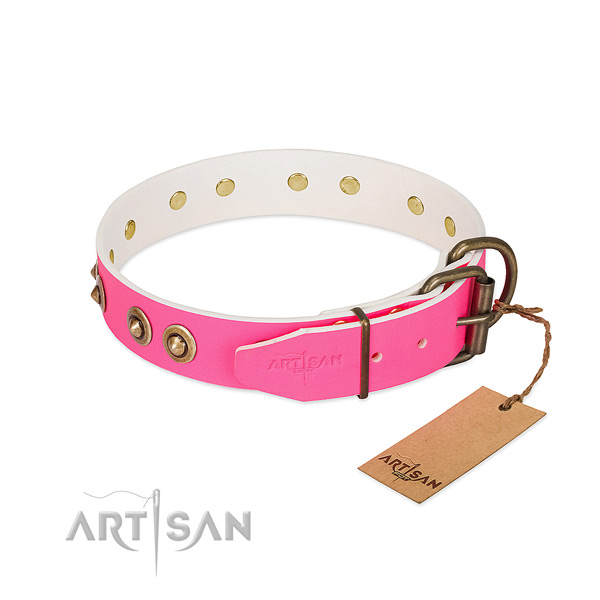 Natural genuine leather dog collar with rust resistant hardware and embellishments