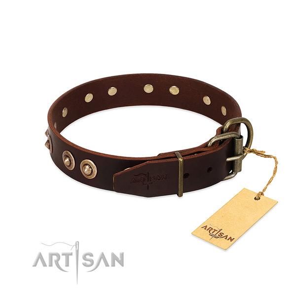 Corrosion proof studs on leather dog collar for your pet