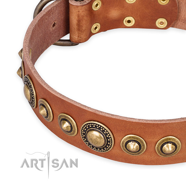 Best quality full grain natural leather dog collar handmade for your beautiful canine