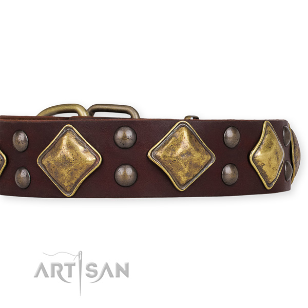 Full grain genuine leather dog collar with stylish corrosion proof embellishments